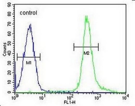 Flow Cytometry - Anti-PNLDC1 antibody - Carboxyterminal end (ab170282)