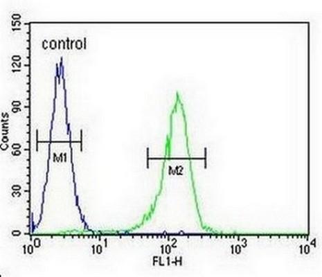 Flow Cytometry - Anti-S adenosylhomocysteine hydrolase antibody (ab170285)