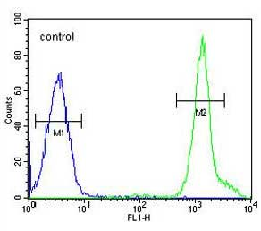 Flow Cytometry - Anti-NIPAL1 antibody - C-terminal (ab170288)