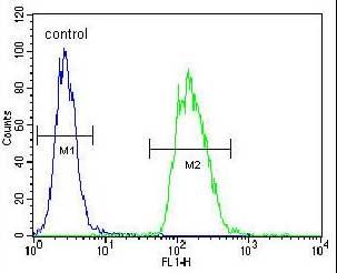 Flow Cytometry - Anti-TRIM43 antibody (ab170294)