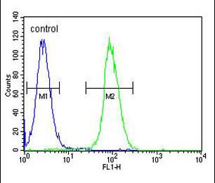 Flow Cytometry - Anti-LIPC antibody - N-terminal (ab170338)