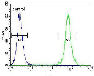 Flow Cytometry - Anti-TRADD antibody (ab170371)