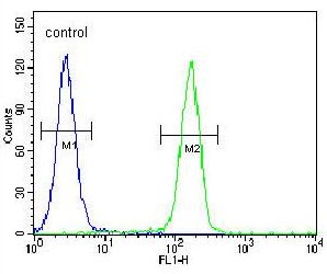 Flow Cytometry - Anti-GTF3C4 antibody - N-terminal (ab170386)