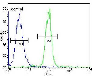 Flow Cytometry - Anti-TCF21 antibody - C-terminal (ab170395)