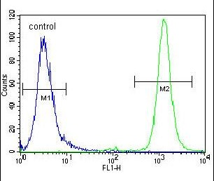 Flow Cytometry - Anti-RASSF8 antibody (ab170399)