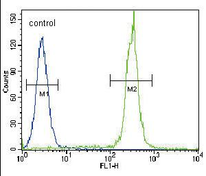 Flow Cytometry - Anti-Betacellulin antibody - Aminoterminal end (ab170516)