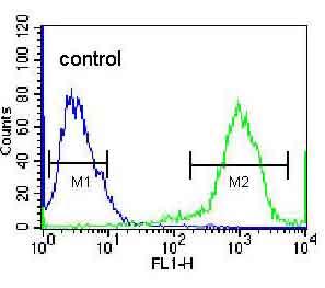 Flow Cytometry - Anti-RHOXF2 antibody - N-terminal (ab170566)