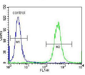Flow Cytometry - Anti-OXA1L antibody - C-terminal (ab170567)