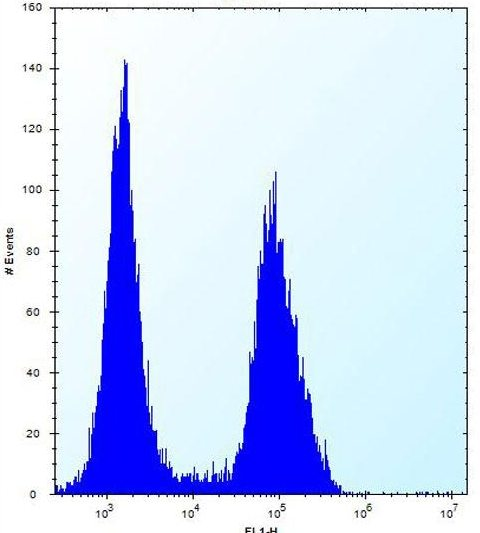 Flow Cytometry - Anti-Enterokinase antibody - C-terminal (ab170601)