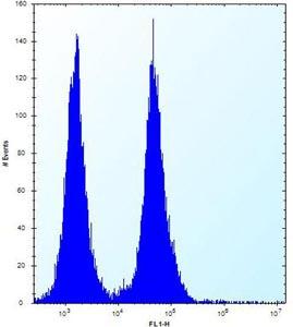 Flow Cytometry - Anti-OR11L1 antibody - C-terminal (ab170762)