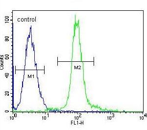 Flow Cytometry - Anti-GLMN antibody (ab170776)