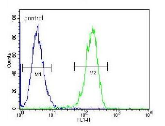 Flow Cytometry - Anti-CPSF7 antibody - C-terminal (ab170792)