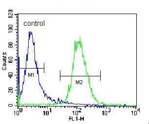Flow Cytometry - Anti-NKD2 antibody - C-terminal (ab170804)