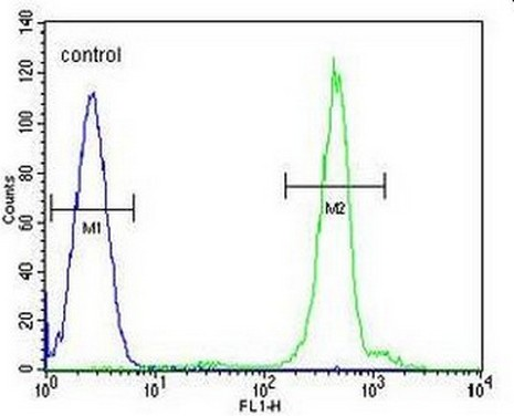 Flow Cytometry - Anti-Dppa5 antibody - N-terminal (ab170807)
