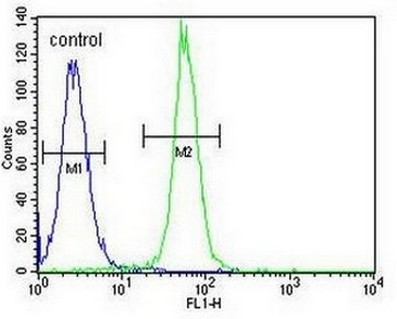 Flow Cytometry - Anti-ARL5B antibody - C-terminal (ab170810)