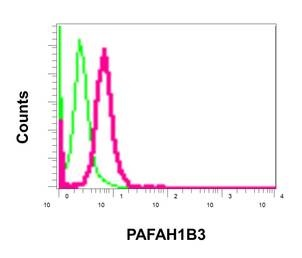 Flow Cytometry - Anti-PAFAH1B3 antibody [EPR11231-10-6] (ab170877)