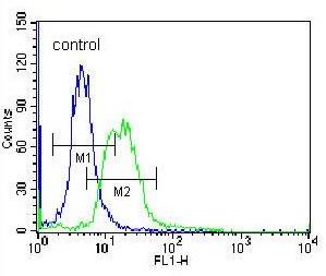 Flow Cytometry - Anti-MPP3 antibody - C-terminal (ab171369)