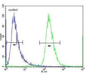 Flow Cytometry - Anti-CHI3L2 antibody (ab171409)