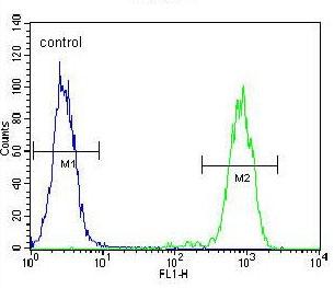 Flow Cytometry - Anti-ELAVL2 antibody (ab171414)