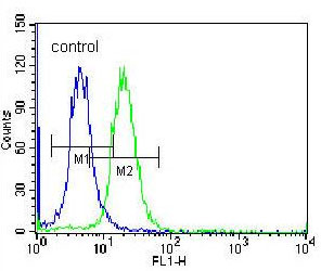 Flow Cytometry - Anti-FSH beta antibody (ab171431)