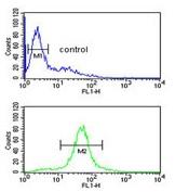 Flow Cytometry - Anti-CC130 antibody (ab174376)