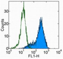 Flow Cytometry - Anti-Sca1 / Ly6A/E [D7] antibody - Low endotoxin, Azide free (ab174602)