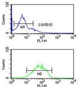Flow Cytometry - Anti-HHAT antibody - N-terminal (ab174944)