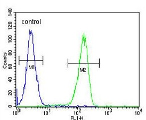 Flow Cytometry - Anti-KCT2 antibody (ab174954)