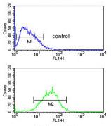 Flow Cytometry - Anti-WDR82 antibody - N-terminal (ab175071)