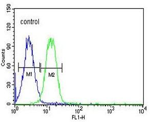 Flow Cytometry - Anti-Advillin antibody - N-terminal (ab175126)