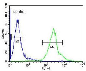 Flow Cytometry - Anti-CCDC69 antibody (ab175301)