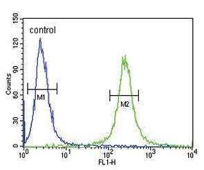 Flow Cytometry - Anti-VLDL Receptor antibody (ab175507)
