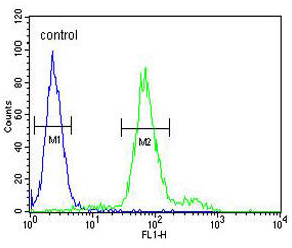 Flow Cytometry - Anti-KLF16 antibody (ab175892)