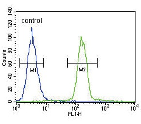 Flow Cytometry - Anti-Tyrosinase antibody - C-terminal (ab175997)