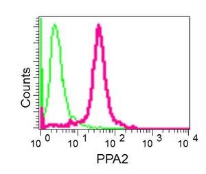 Flow Cytometry - Anti-PPA2 [EPR13087(B)] antibody (ab177935)