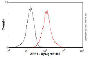 Flow Cytometry - Anti-ARF1 antibody [ARFS 1A9/5] (ab18108)