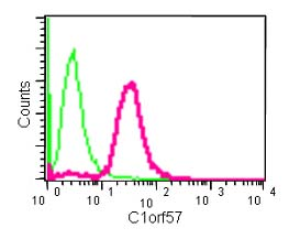 Flow Cytometry - Anti-C1orf57 [EPR14325] antibody (ab182154)