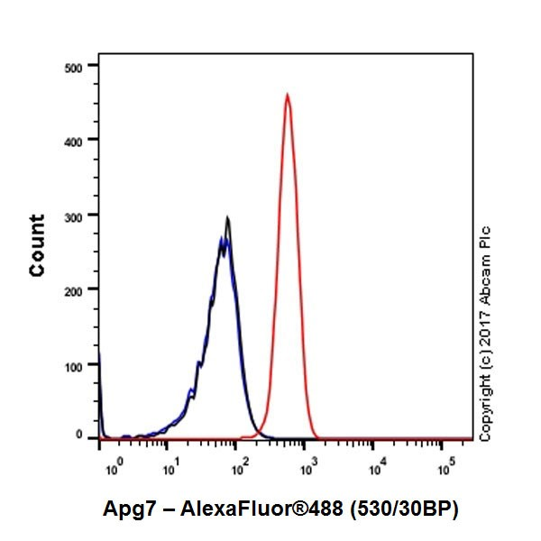 Flow Cytometry - Anti-Apg7 antibody [EPR20384] (ab183188)