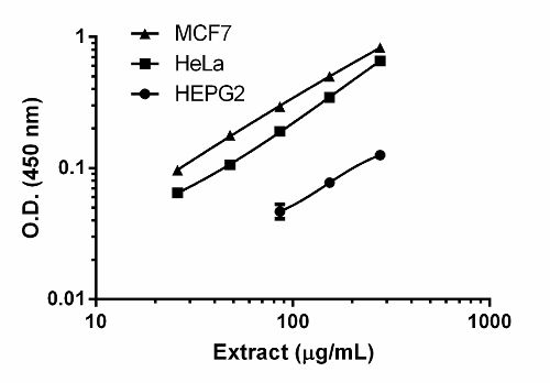Titration of MCF7, HeLa, and HEPG2 extracts within the working range of the assay.