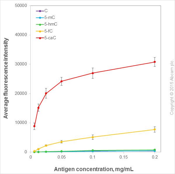 Nucleotide Array - Anti-5-carboxylcytosine (5-caC) antibody (ab185492)