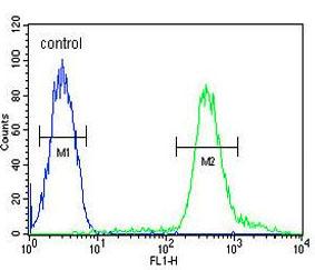 Flow Cytometry - Anti-Teashirt homolog 2 antibody (ab190222)