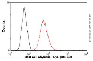 Flow Cytometry - Anti-Mast Cell Chymase antibody [CC1] (ab2377)