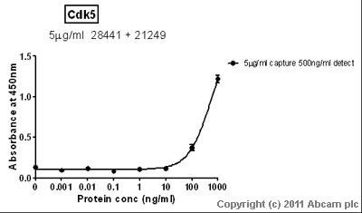 Sandwich ELISA - Anti-Cdk5 antibody (ab21249)