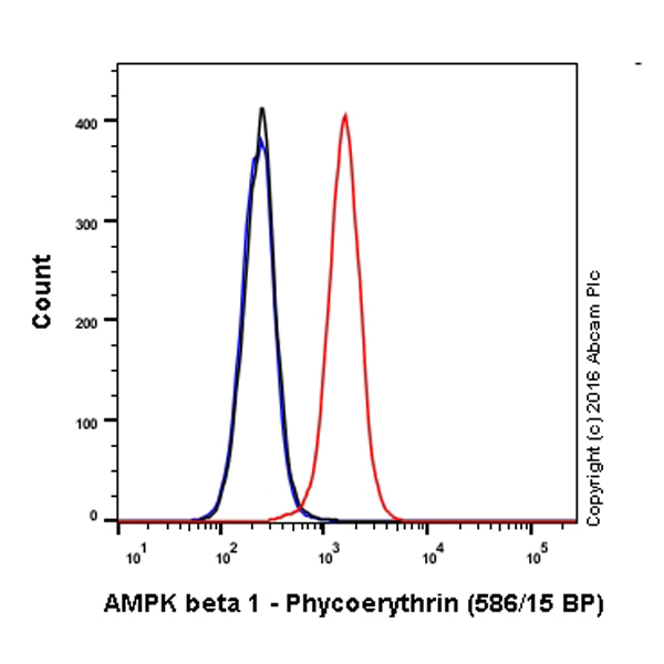 Flow Cytometry - Anti-AMPK beta 1 antibody [Y367] (Phycoerythrin) (ab211688)