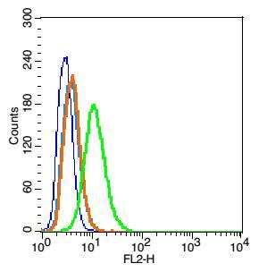 Flow Cytometry - Anti-Caveolin-1 antibody (ab214448)