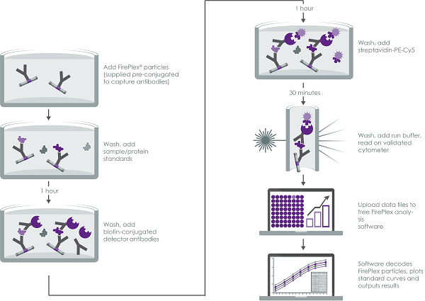 Multiplex Immunoassay summary.