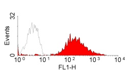 Flow Cytometry - Anti-MHC Class II antibody [CVS20] (ab23206)