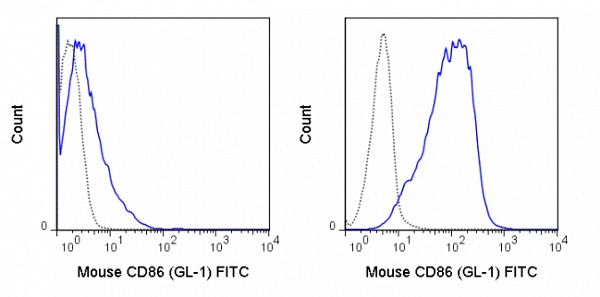 Flow Cytometry - Anti-CD86 antibody [GL1] (FITC) (ab24862)