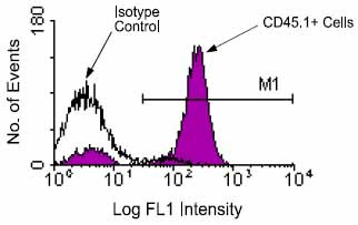 Flow Cytometry - CD45.1 antibody [A20] (FITC) (ab24917)