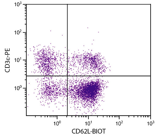 Flow Cytometry - Anti-CD62L antibody [MEL-14] (Biotin) (ab24969)